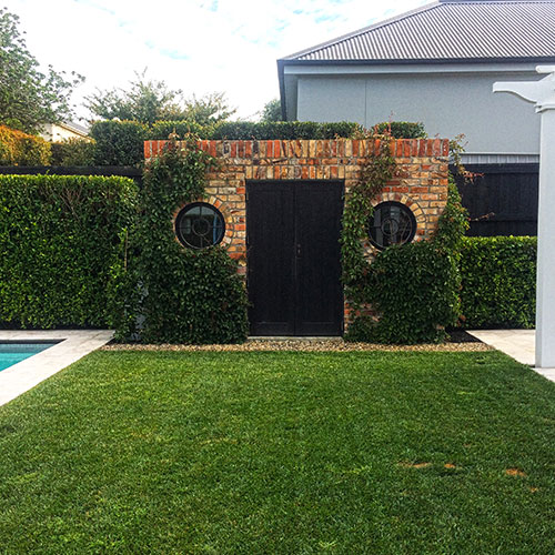 Backyard Residential Greenwall & Landscaping