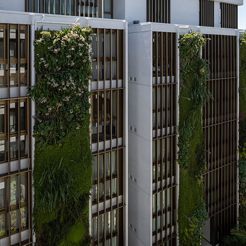 Commercial Green Wall Landscaping